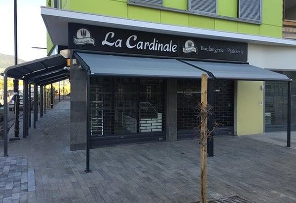 proteger-devanture-magasin-du-soleil-store-velum