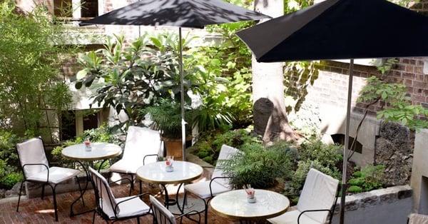 amenager-exterieur-restaurant-plantes